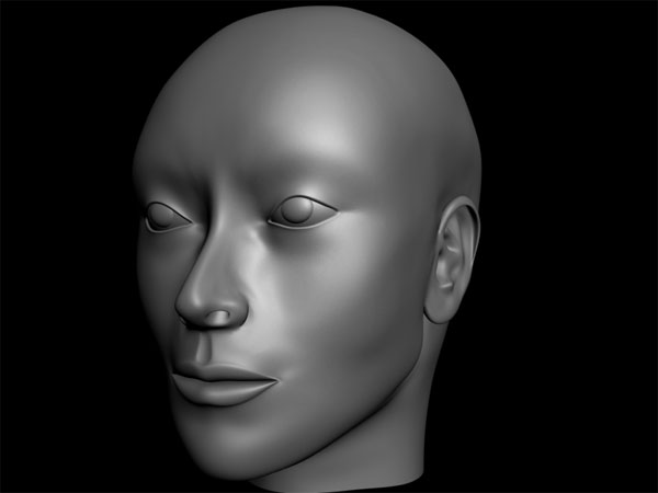 Human head face man woman universal 3ds 3d studio for 3ds max face modeling